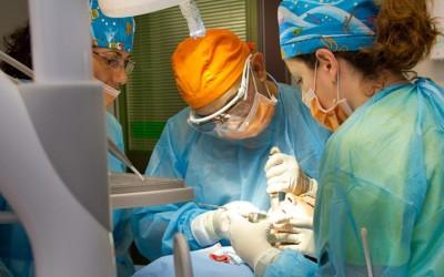 Cicatrización de una extracción dental