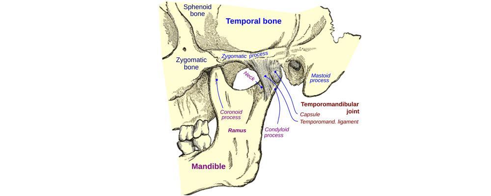 Enfermedaders articulación temporomandibular ATM